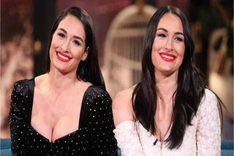 Brie & Nikki Bella Share Every Detail About Their Births & Postpartum Lives - E! Online