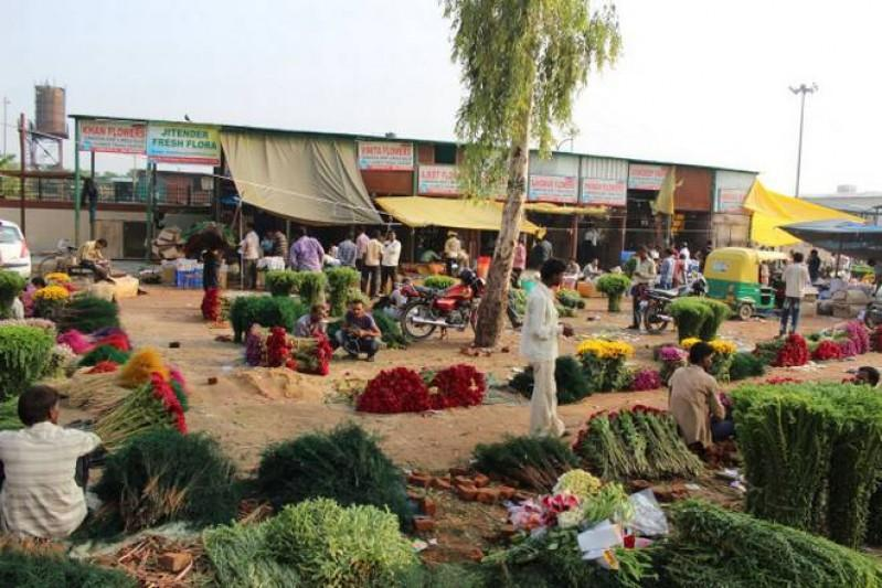 Time to visit Delhi's Ghazipur Flower Mandi
