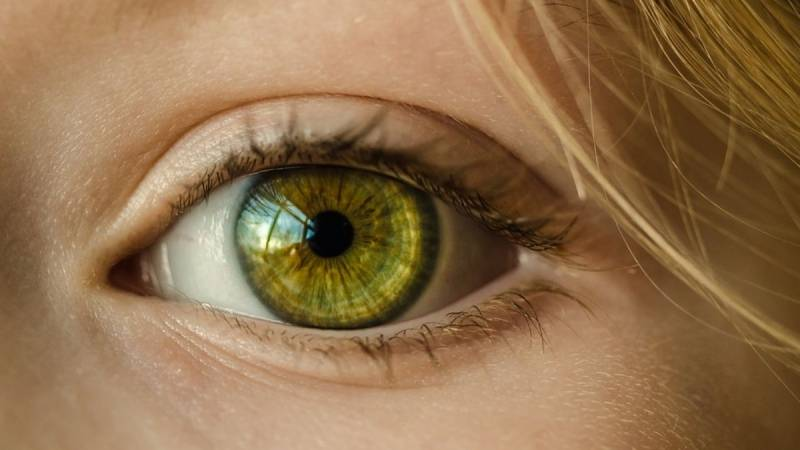 Essential Winter Eye Care Tips