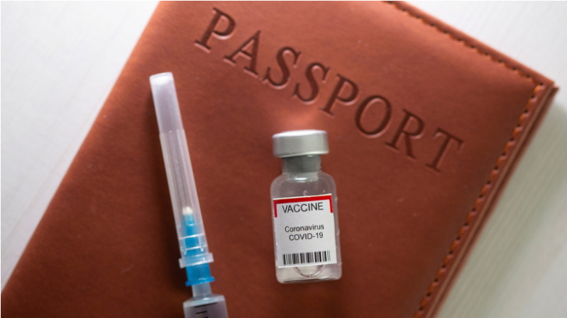 Vaccine passports for cross-border travel take off in Europe as US looks 'very closely' at concept, but promises 'no mandates'