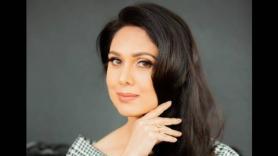 Meenaakshi Sheshadri On Her Plans Of Making Bollywood Comeback | Meenaakshi Sheshadri On Quitting Films At Peak Of Career